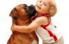 חיות מחמד בבית נקי – טיפים לניקיון!